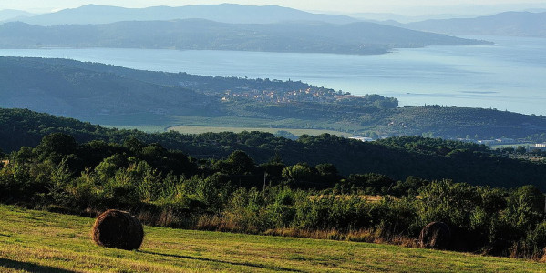 Hiking experience along the Trasimeno hills: Sanguineto and Monte Gualandro
