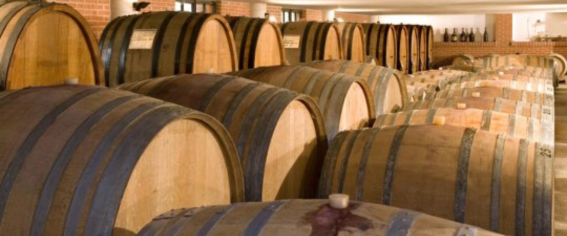 tasting of wine in Langhe