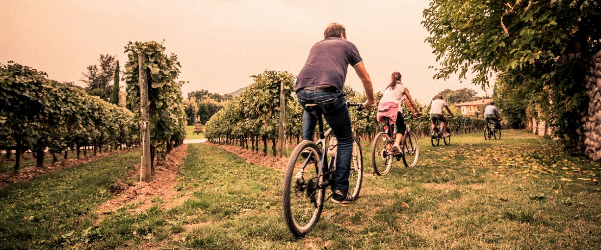bike experience in Franciacorta