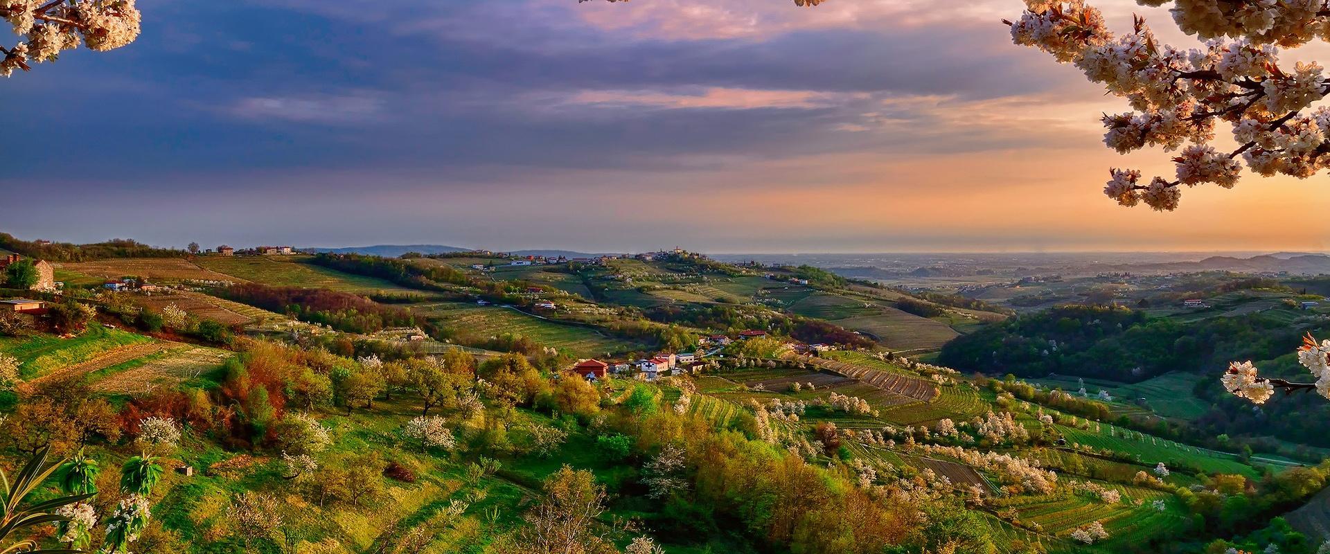 Tour Veneto  Where the wine become poetry!