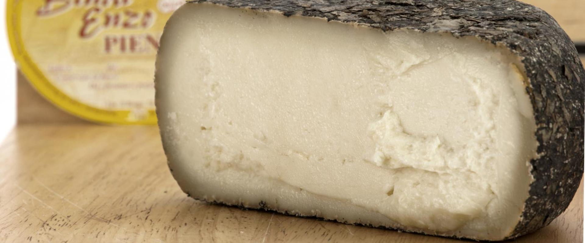 """Tasting of """"Pecorino cheese of Pienza"""", An ancient culinary excellence of Val d'Orcia!"""