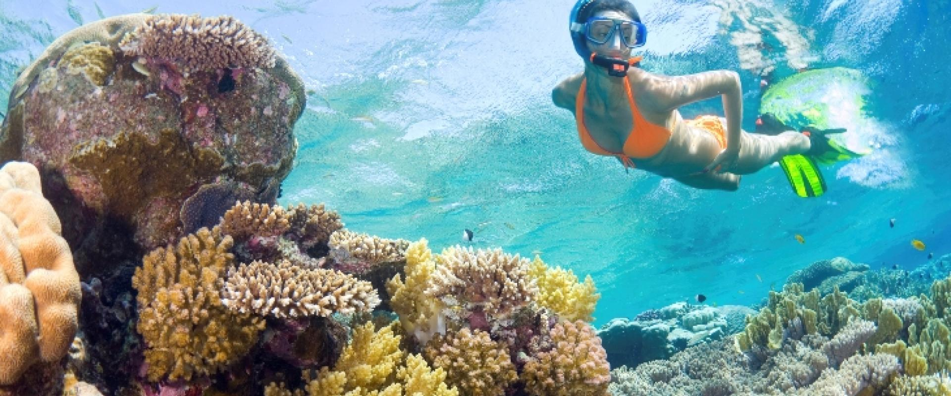 Snorkeling in the gulf of Poets