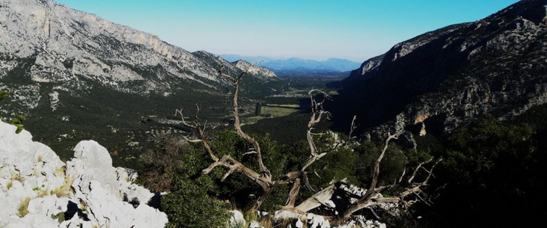 trekking on Monte Corrasi