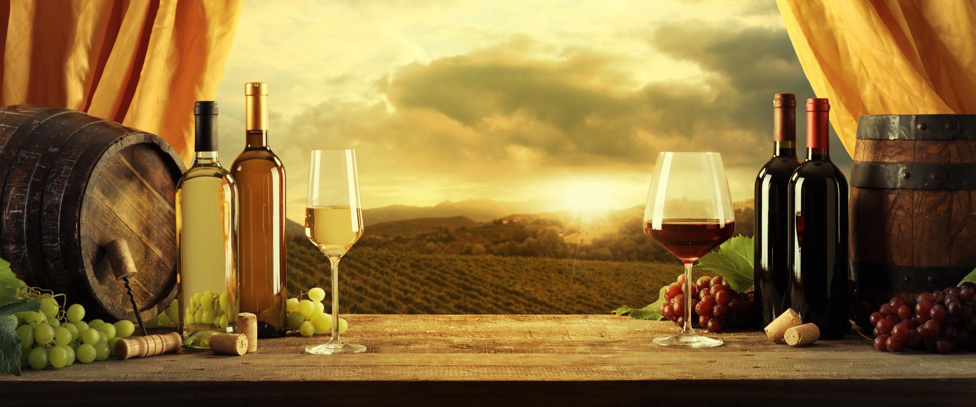 Tasting wine in Chianti area