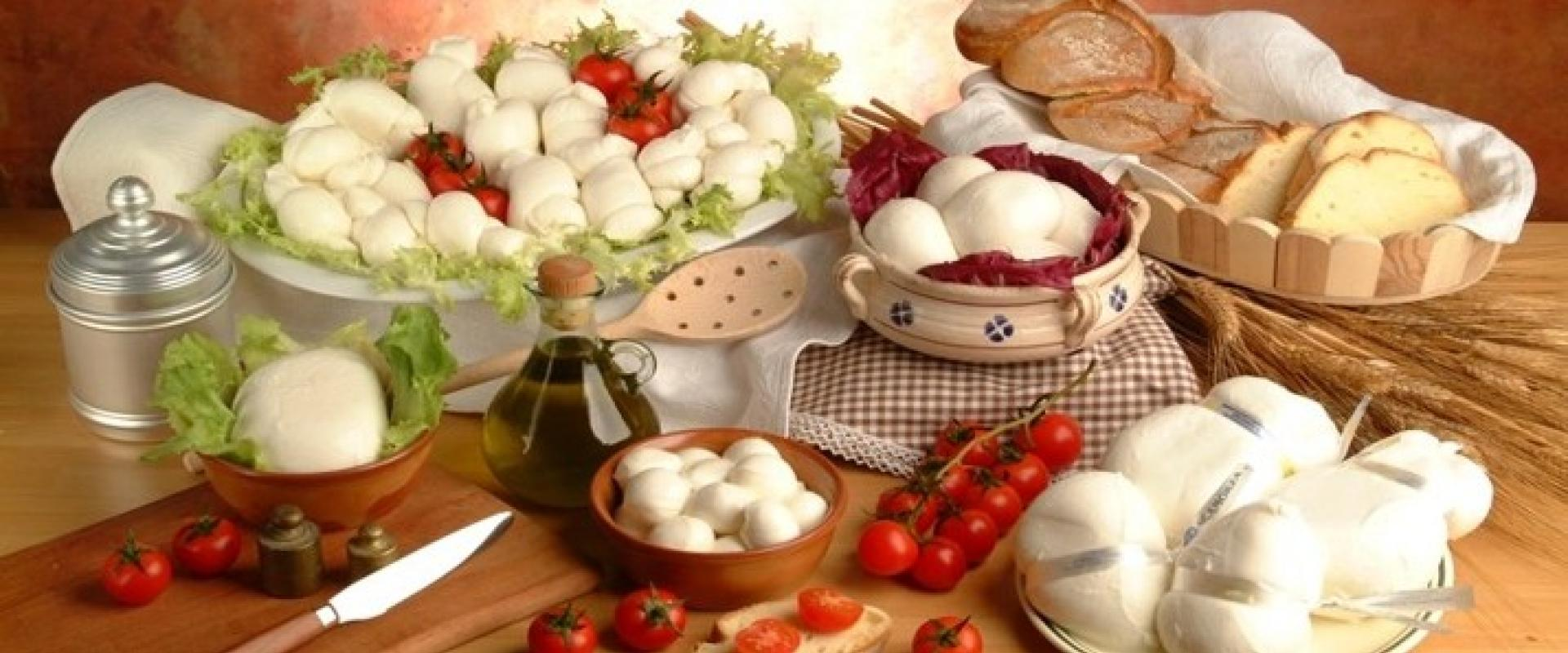 Visit of a famous apulian factory whith cheeses tasting