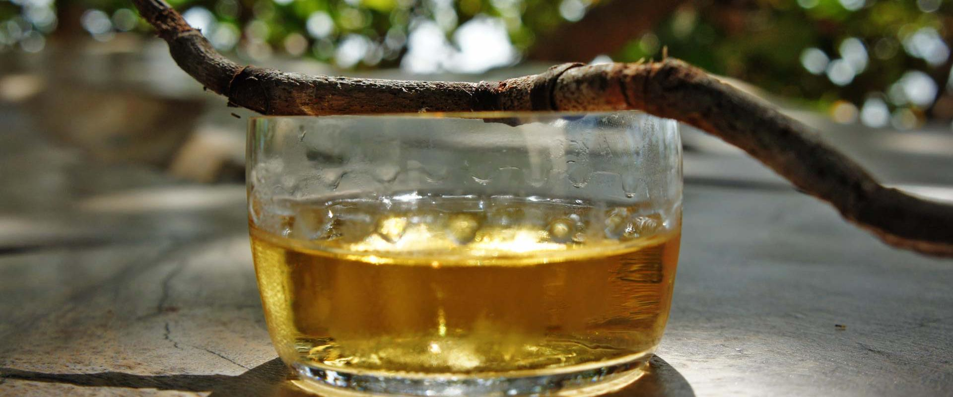 """Tasting of typical """"Sciacchetrà"""" wine, A typical ligurian """"Passito""""!"""