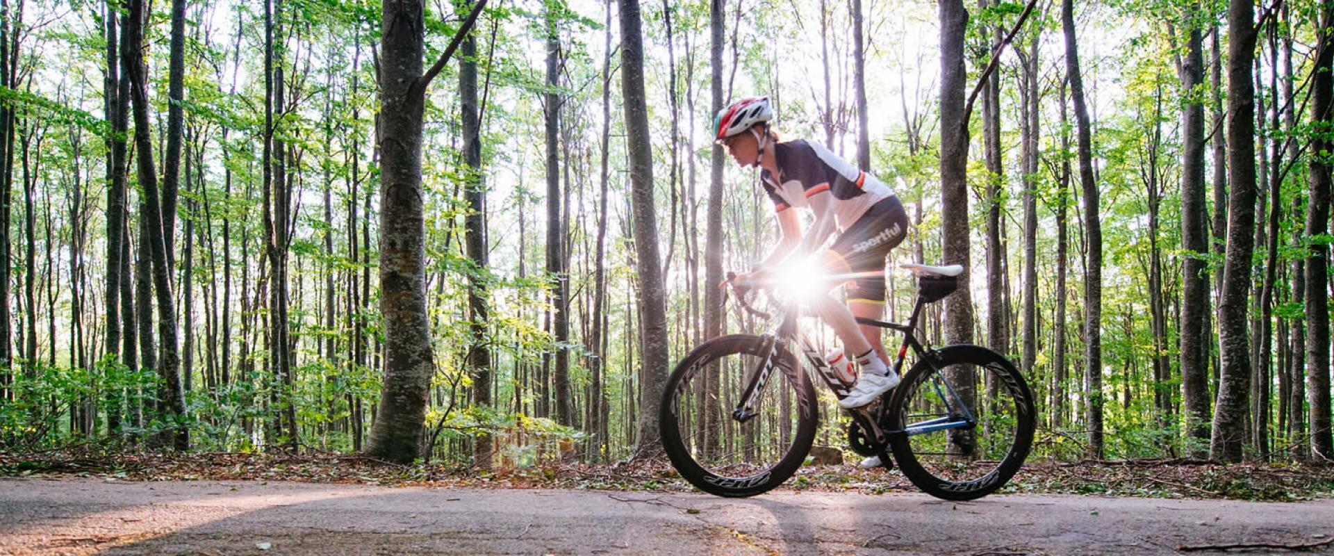 Bike experience in Garda lake
