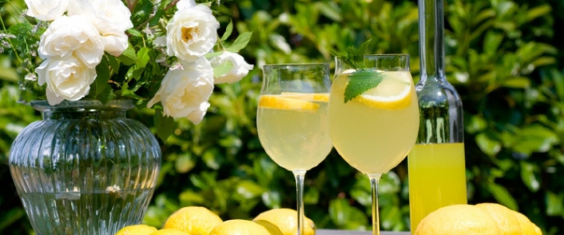 Рецепт лимончино с перемолотыми лимонами