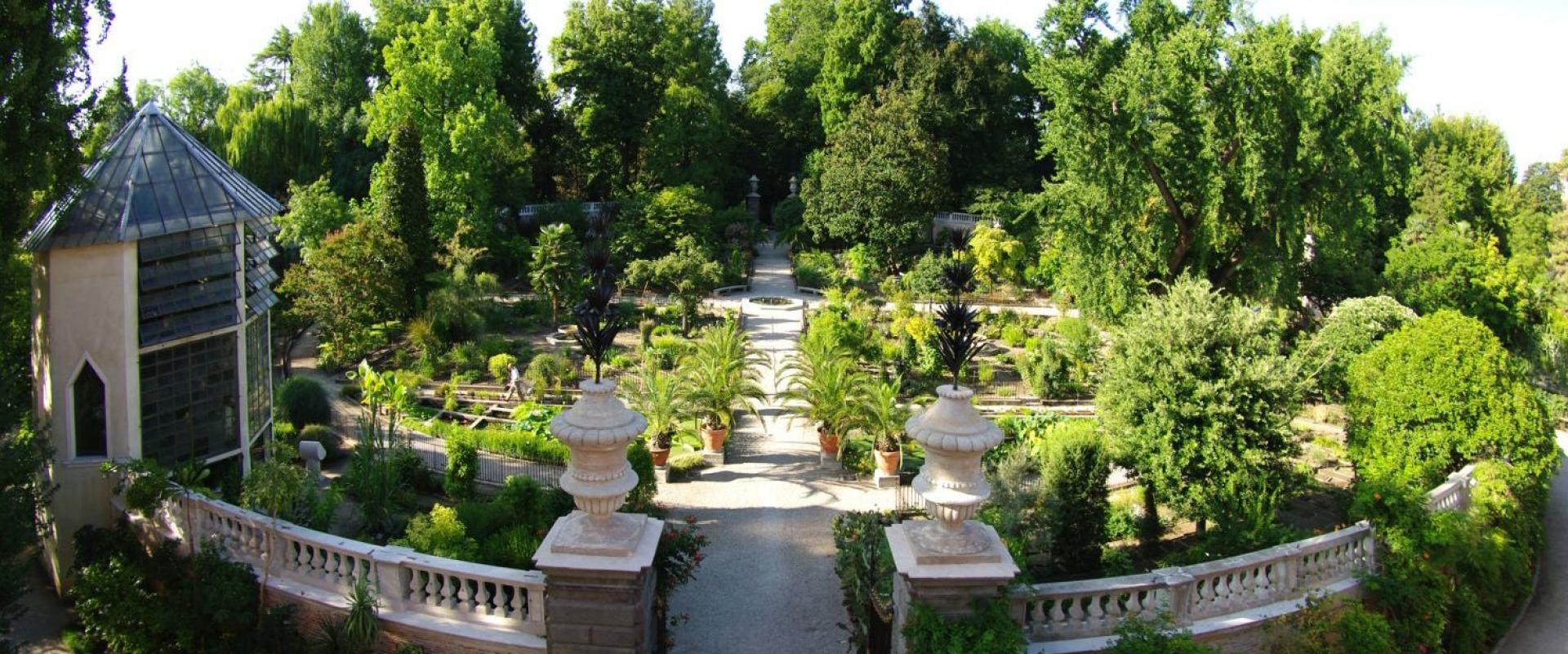 tour of the botanical garden of Padua