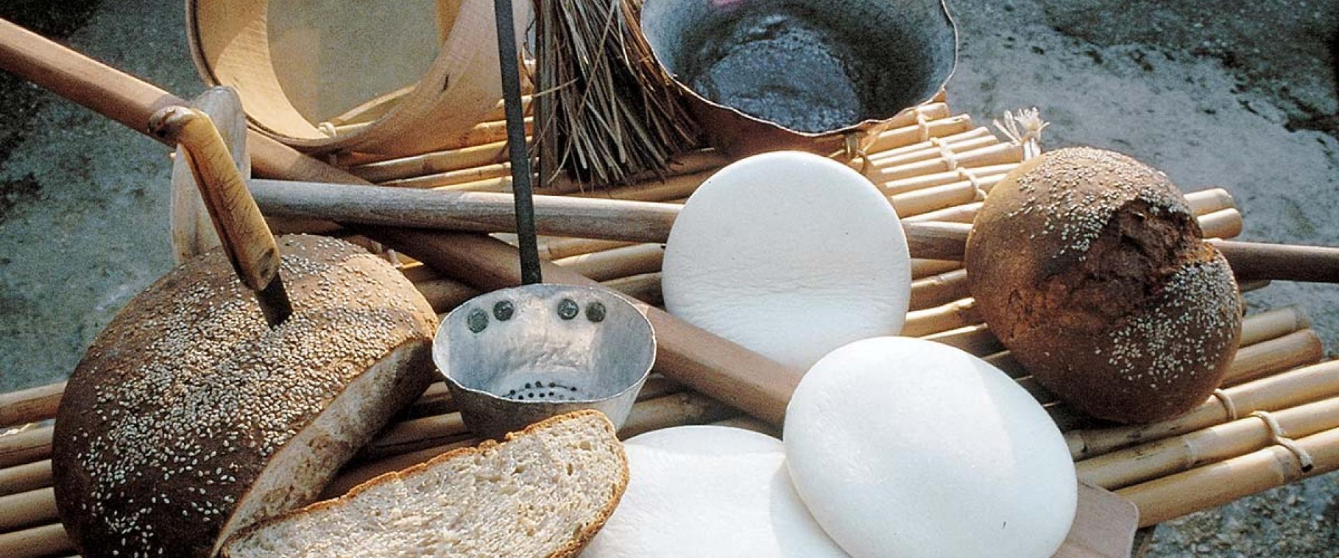 Visit a farm dairy and cheeses tasting in Sambuca di Sicilia area