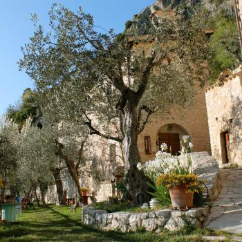 Guest House Runcini