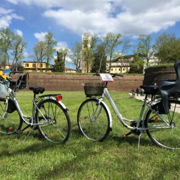 Guided Cycling experience through Lucca countryside