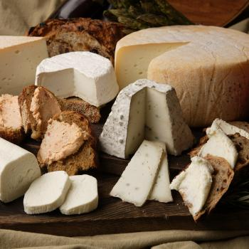 cheeses tasting in Castel del Monte