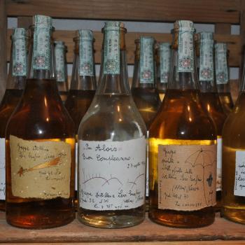 Grappa distillery