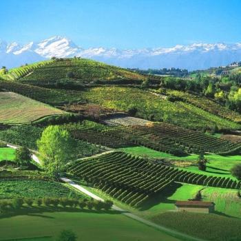 Tour of Langhe Piedmont