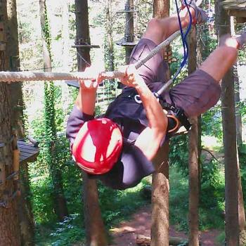 Adventure Park in Valnerina An adventure among the trees!