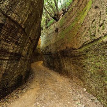 road of tufo Tuscany