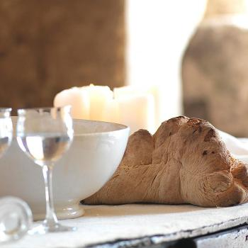 Bread and mozzarella tasting experience and workshop in Matera