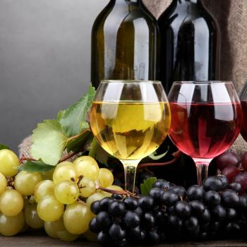 degustazione vino cascina serra
